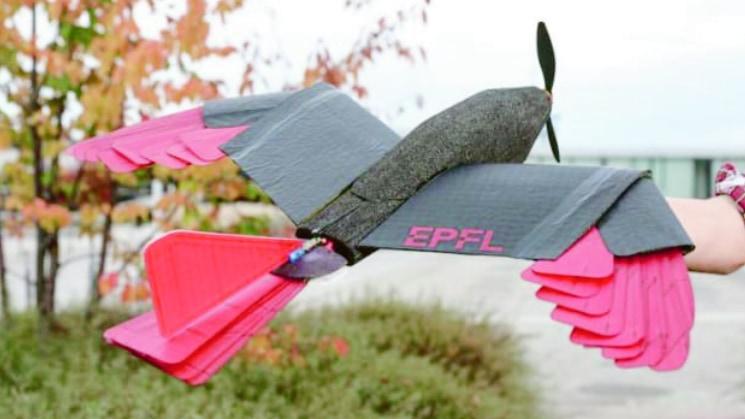 """タカの飛び方にヒントを得た「新型ドローン」が登場、""""翼と尾""""を持つメリットとは?"""