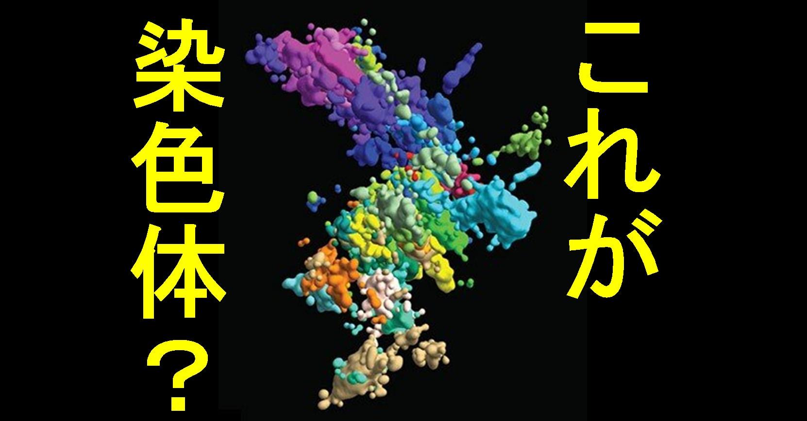 超解像顕微鏡法を使用して作成されたクロマチンの多色画像