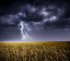 広い平原や森などは、避雷針を立ててもどこに雷が落ちるかはわからない。