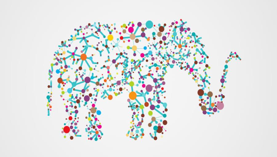 ゾウは人間の20倍もの腫瘍抑制遺伝子を持っている