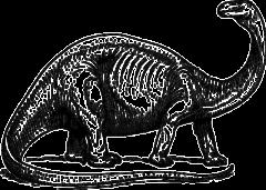 竜脚類の一般的なイメージ。