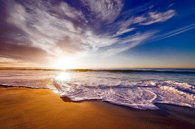 今回の研究の舞台となったカリフォルニアの海。