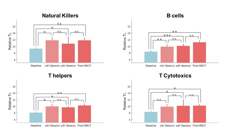 それぞれの細胞のテロメアの長さの変化(30回目、60回目、終了後)