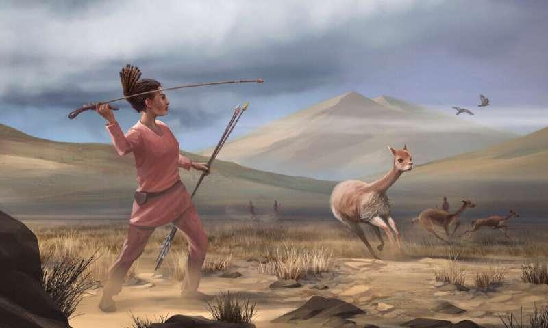 初期の社会では女性も狩りに従事していた?