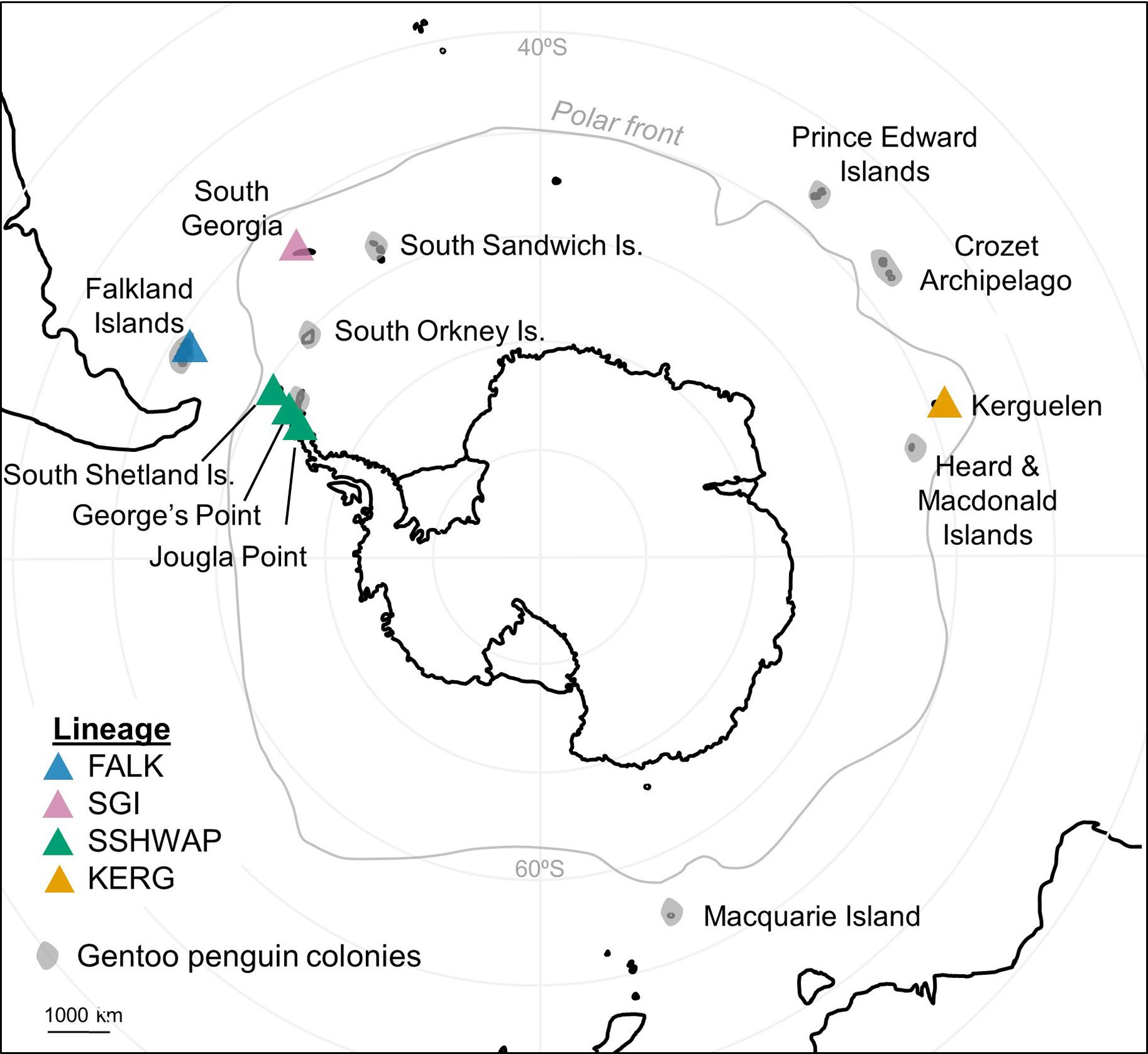ジェンツーペンギンの生息地域。灰色の領域は既知の生息地。色付き三角が今回調査されたコロニーを示す。