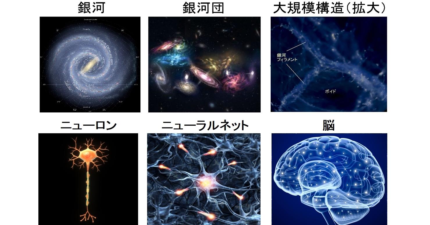 銀河もニューロンも階層構造をとる