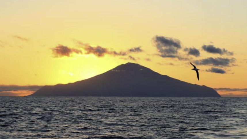 絶海の孤島を「地球最大の生態系スポット」にするプロジェクトが進行中