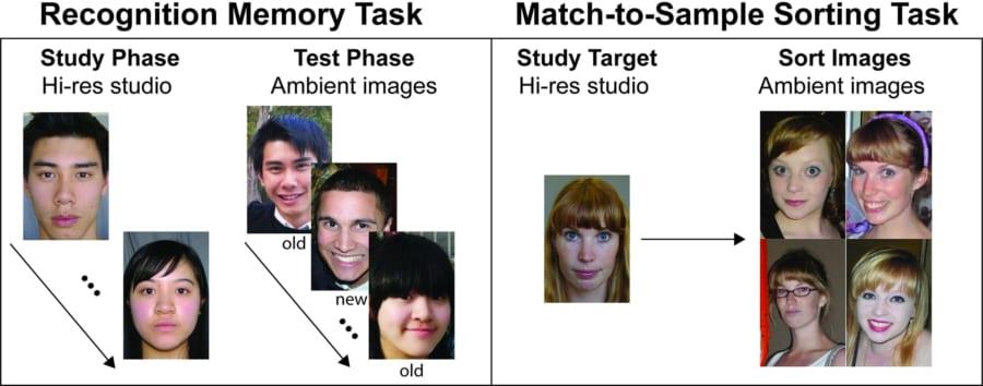 顔記憶テストの概要。