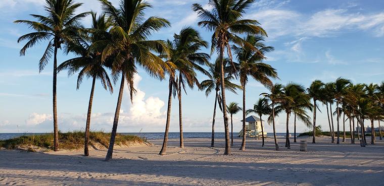 マイアミは例年、温暖な場所として有名