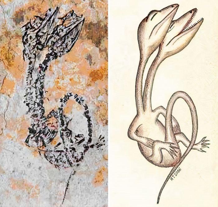 頭が2つある白亜紀の爬虫類