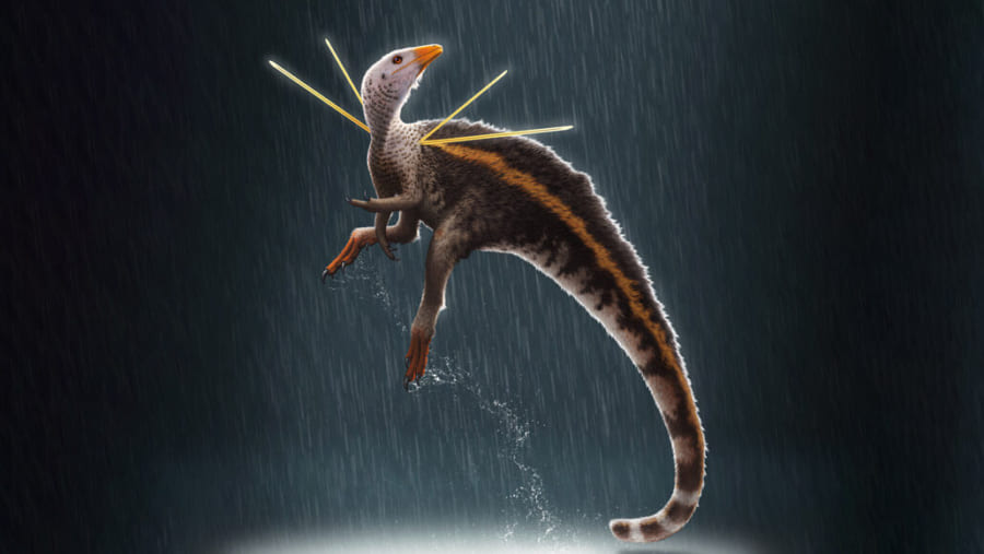 肩のトゲと自在に動くタテガミを持った恐竜を発見! 学名は「槍の神」