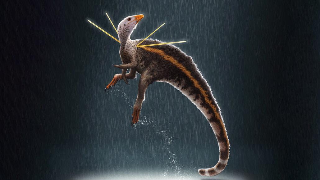 肩に2本ずつトゲの生えた新種恐竜