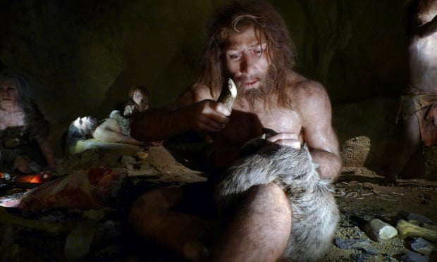 冬は洞窟内で冬眠した?