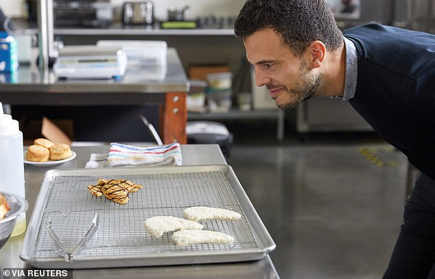 アメリカの企業が開発した人工鶏肉