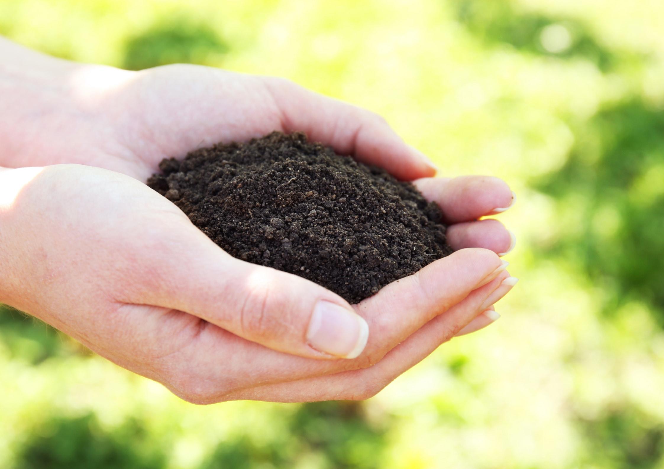地球の土はどうやって出来たのか?
