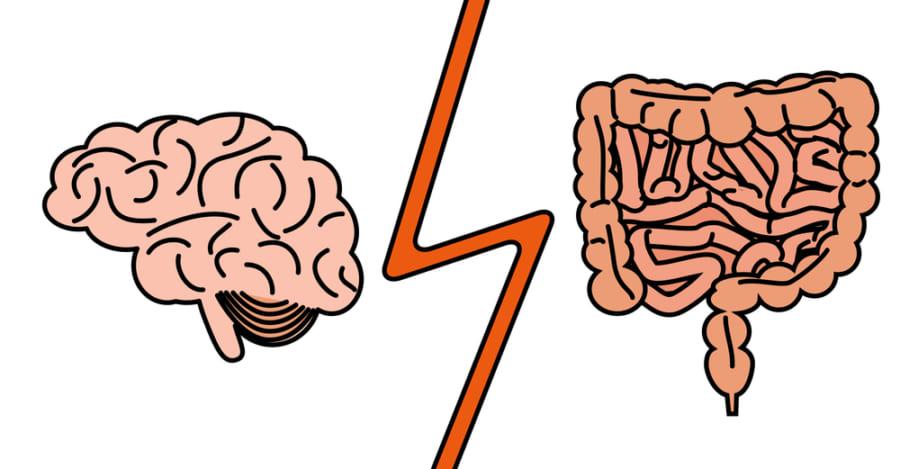 痛み信号を受け取った脳は、痛み抑制物質を放出