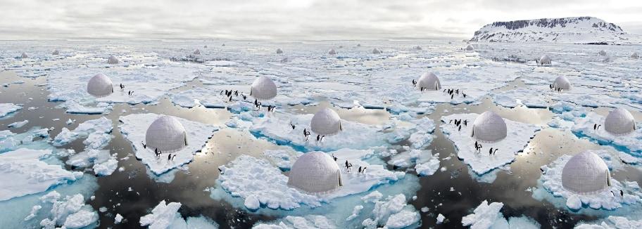 環境建築プロジェクトで7位になった「ペンギン保護システム」