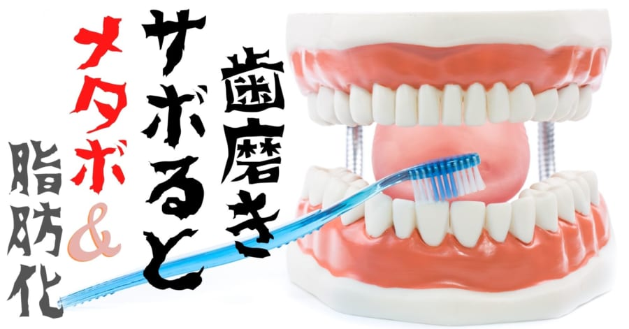 歯磨きしないとメタボになり、筋肉が「脂肪化」すると報告される!