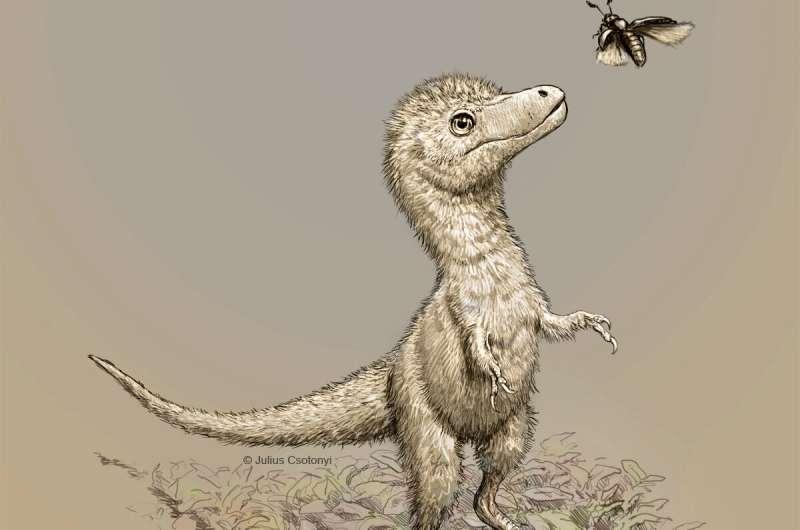 スピルバーグは間違っていた? 孵化直後のティラノサウルスは「成犬のボーダーコリー」くらいあったと判明!