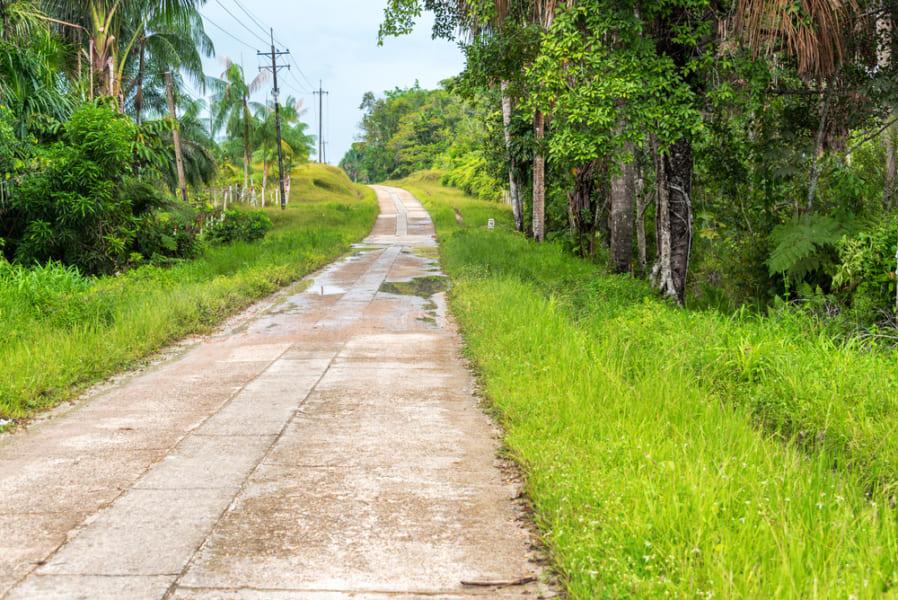 アマゾンの高速道路
