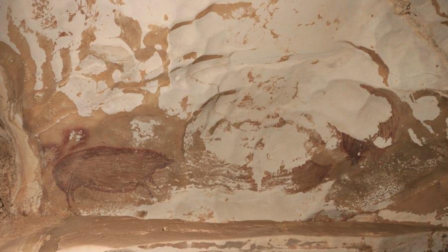 最古のブタの壁画