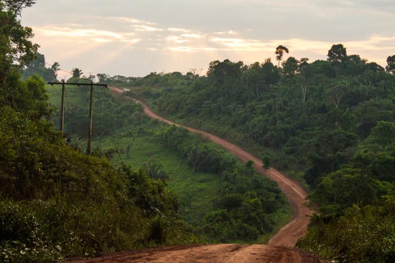 アマゾンの生態系を脅かす「道」をAIが発見