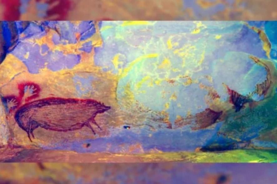 4万5000年前のブタ、「最古の動物壁画」をインドネシアの洞窟で発見!