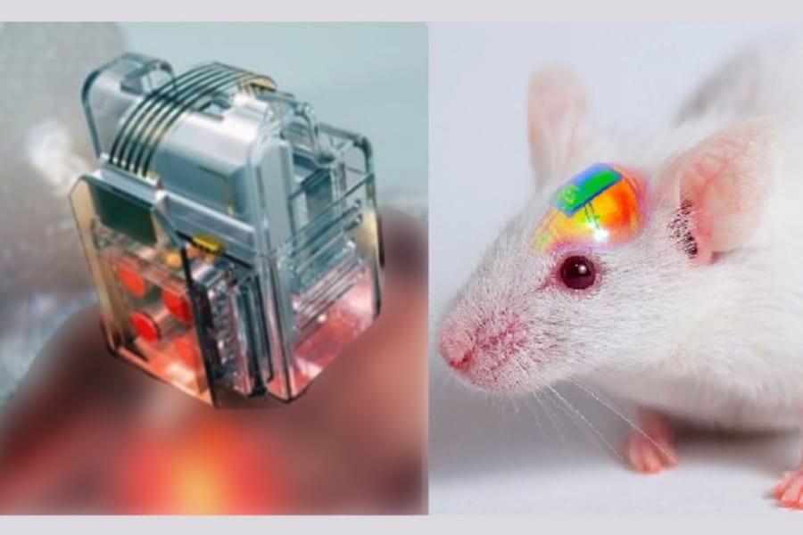 マウスの精神をスマホで操作できる「脳制御チップ」のワイヤレス充電化に成功!