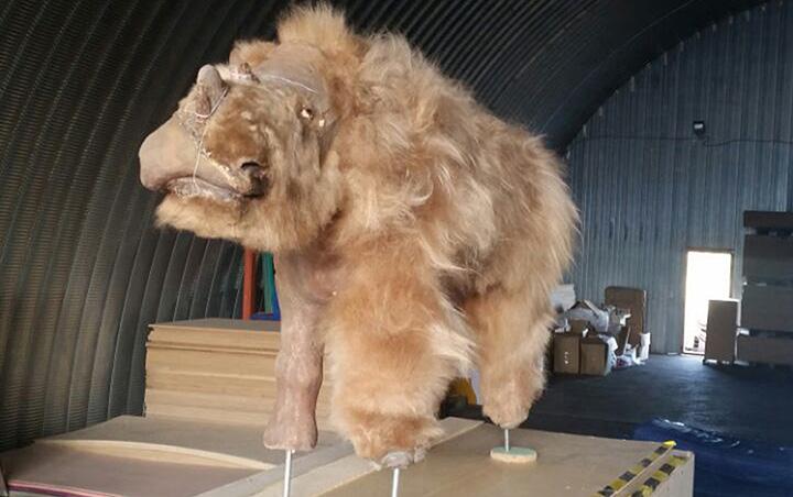 「サーシャ」の復元像