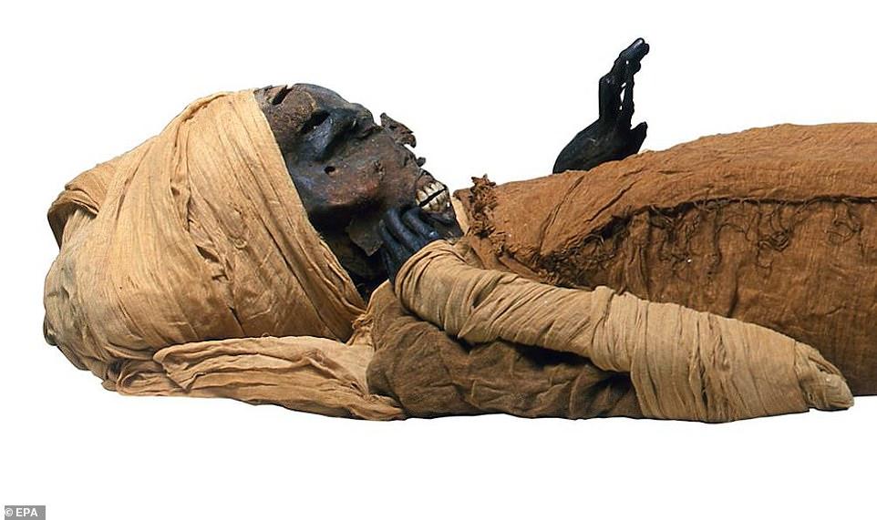 エジプト第17王朝ファラオ・セケンエンラーのミイラ
