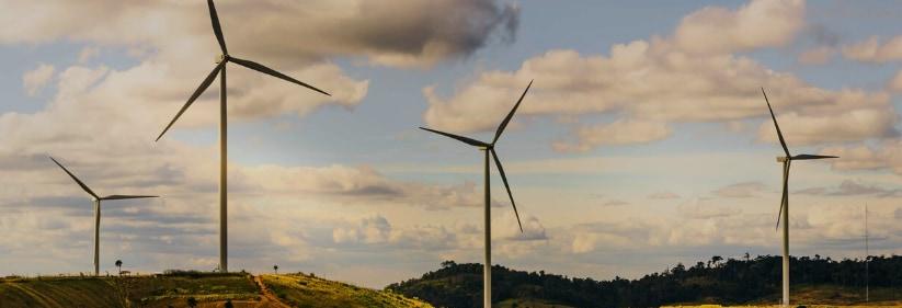 風力発電機のプロペラで多くの鳥が死亡している