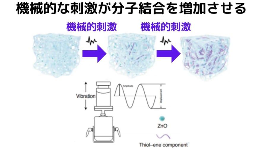 外部からの機械的な力を内部の科学的な分子結合力に変換する