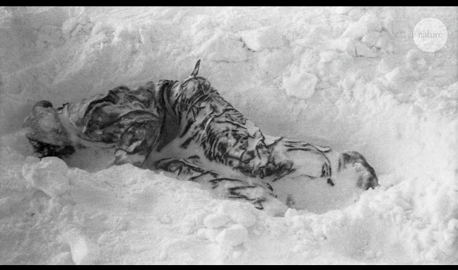 発見された遺体