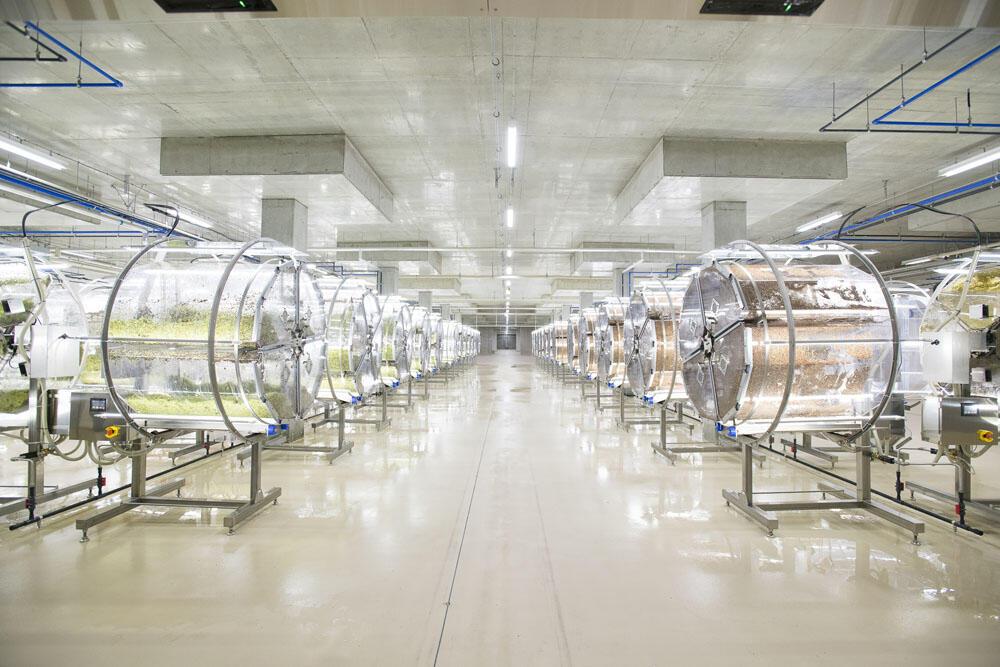新しい完全人工光植物工場