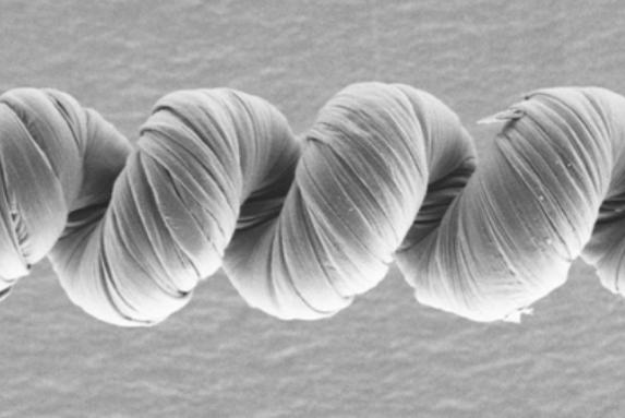 強力な「カーボンナノチューブの人工筋肉」が開発される