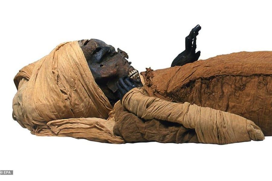 3500年前のファラオの壮絶な死因が明らかに 戦闘で「八つ裂き」にされた勇敢な王