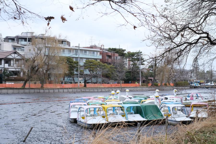 水が抜かれた石神井池とスワンボート