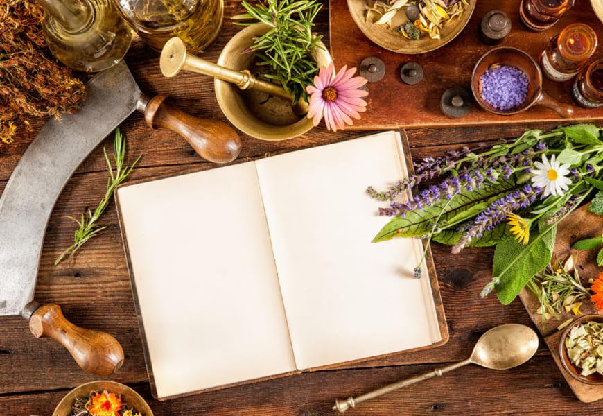 自然は人類のくすり箱「医療効果をもつ植物」4選