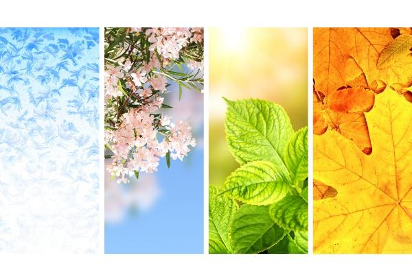 人間のホルモンは季節によって変動すると判明 異性と出会いやすい季節があるかもしれない?