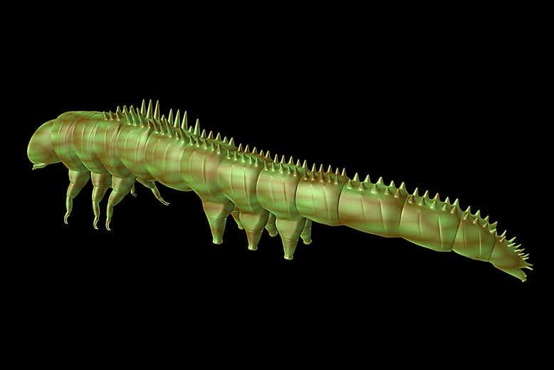 恐竜時代のイモムシは「トゲの装甲」をまとっていたことが判明!