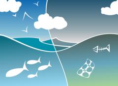 年間800万トンが海や川に流れ込んでいる