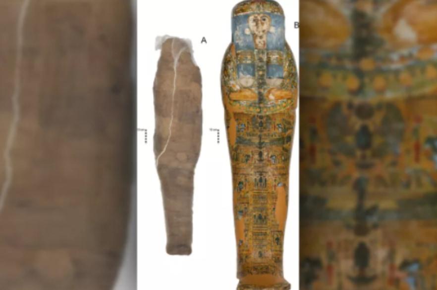 史上初「泥で塗り固められたミイラ」を発見! さらに石棺は別人のものと判明