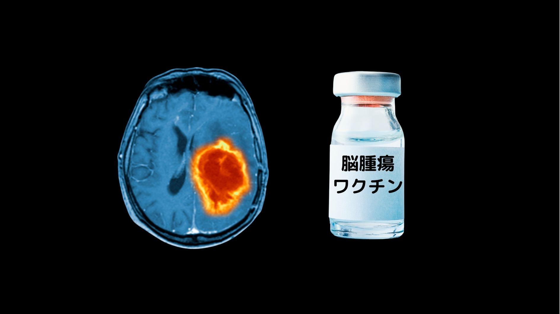 脳腫瘍をワクチンで治療することに成功!