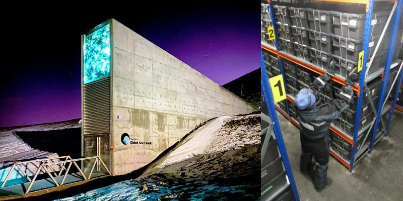 スヴァールバル世界種子貯蔵庫。貯蔵庫搬入口(左)。貯蔵庫内部の様子(右)。
