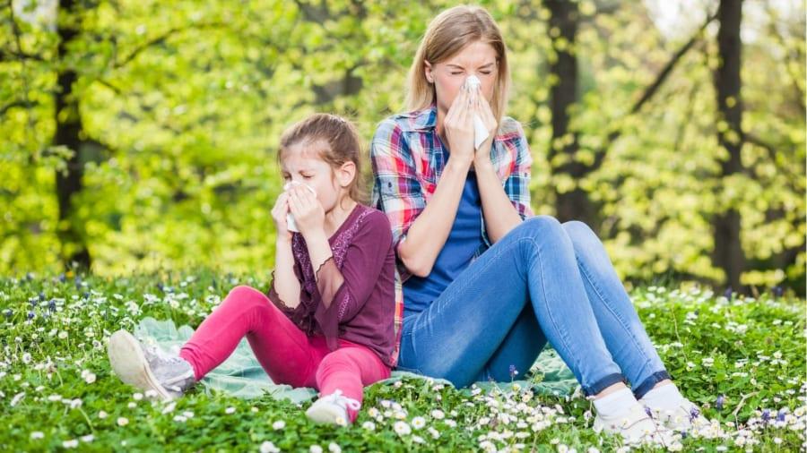 アレルギーや自己免疫疾患は体にとって害になる抗体のせい