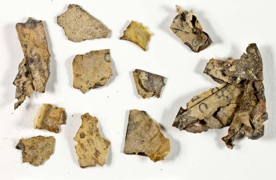 65年ぶりに新発見された「死海文書」の断片