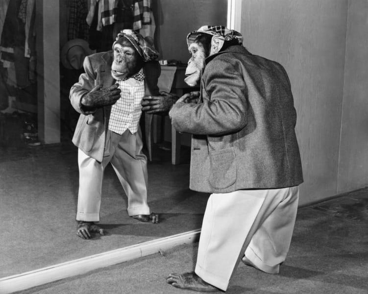 人と猿のキメラ「ヒューマンジー」を作ろうとしたソ連のマッドサイエンティスト