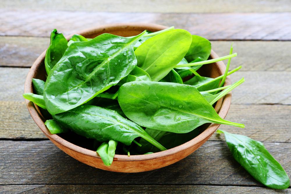 緑葉野菜が筋肉の機能を向上させる