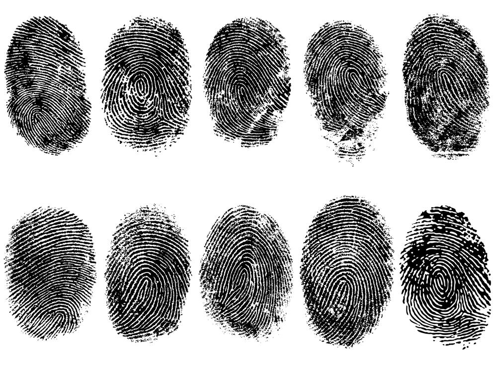 指紋は指の感度を増幅させる