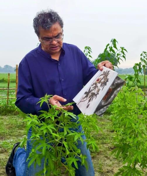 Phuti karpasと似ている植物を探す